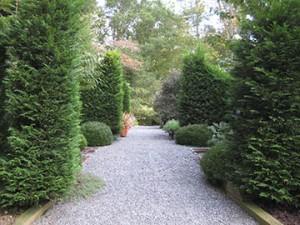 front hedges